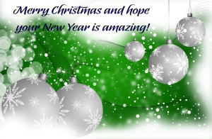 Merry Christmas and Happy New Year from Judy Vorfeld